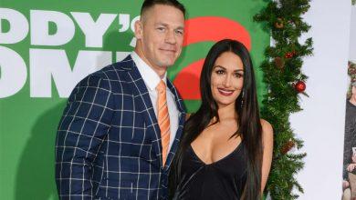 Nikki Bella and John Cena reunited